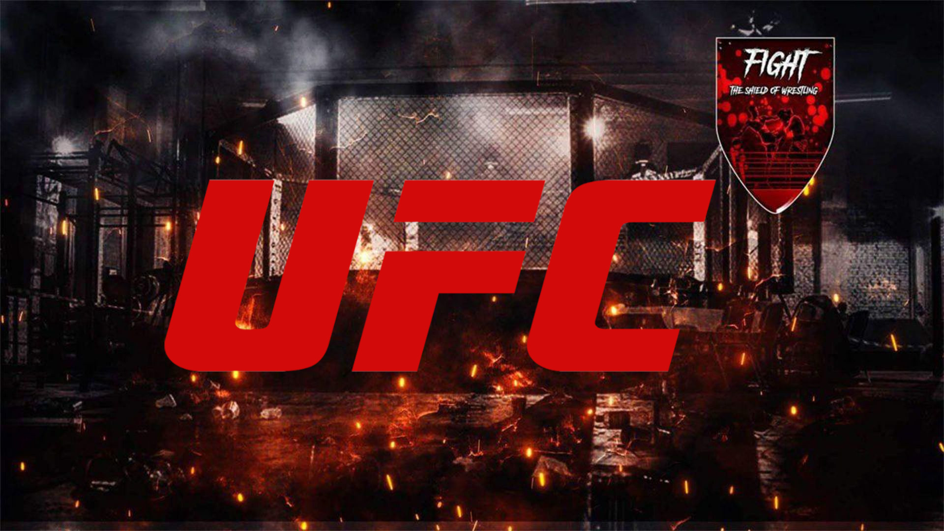 UFC: i 5 dream match tra boxer e fighter